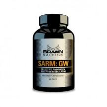 SARM GW 60 CPS